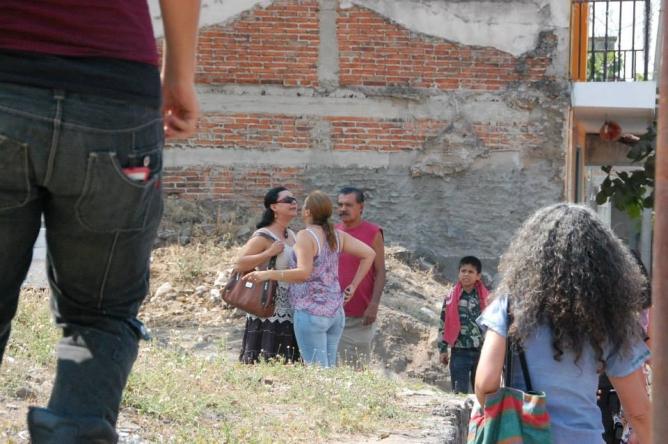 bios iguana 02